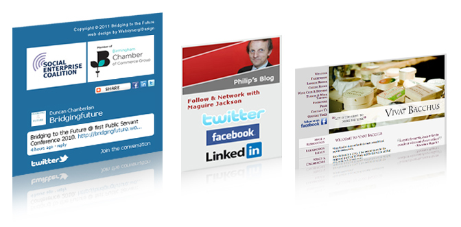 Social Media Integration design and developement on Websites